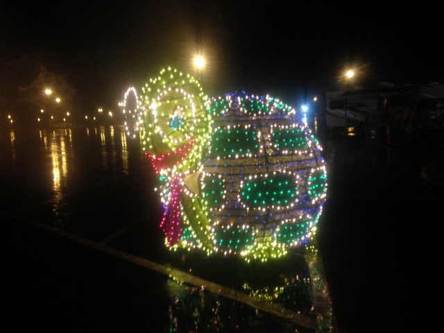 From the electrical parade, I loved seeing this!