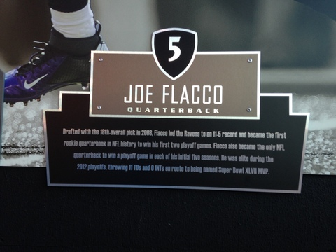 Oh, how I adore our Flacco!