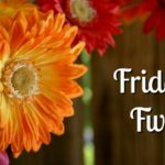 Friday Five: What I've Been Up To!